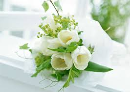 Hoa tang 3