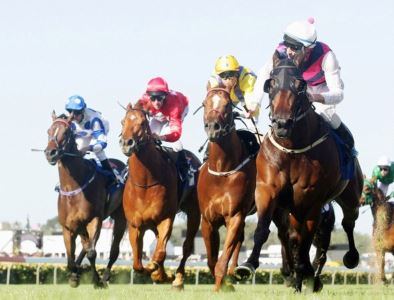melbourne-cup-horse-by-horse-preview-large-content