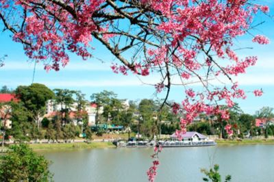 dalat_travel_guide-large-content