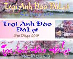 trai-anh-dao-banner-2x8ft